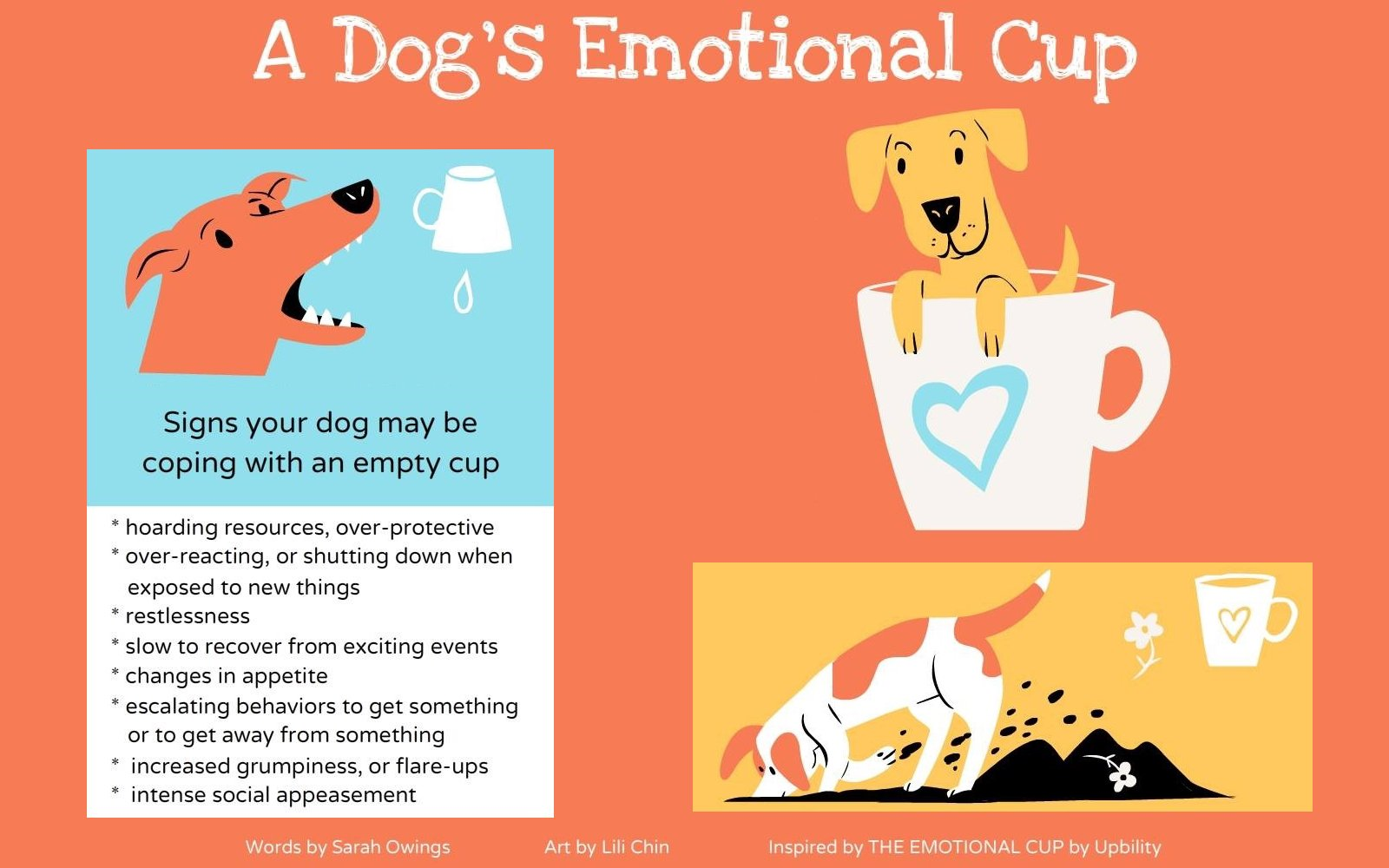 "Image for the article ""A Dog's Emotional Cup"""